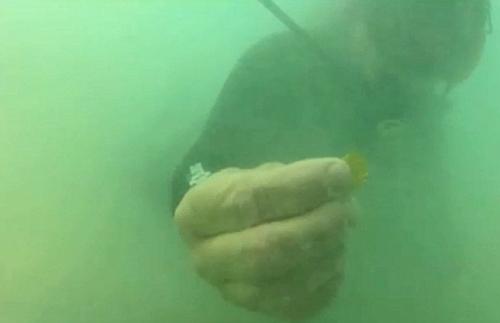 /p> p> 这家打捞公司发现这一沉船残骸后,派人潜水深入海底搜寻宝藏