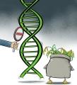 转基因食品你吃了多少?