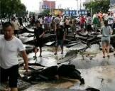 陕西遭暴雨袭击:道路被冲毁 轿车直接被冲走
