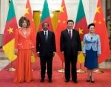 习近平同喀麦隆总统比亚举行会谈 两国元首一致同意推动中喀关系迈向更高水平