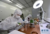 5月22日,中国科学院西安光学与精密机械研究所的科研人员进行条纹变像管管体装架。