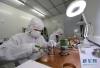 5月22日,中国科学院西安光学与精密机械研究所的科研人员在对真空元器件进行激光焊接。