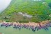 鄱阳湖第17个禁渔期即将结束 渔民整理渔具渔船等待开渔【2】